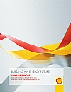 Royal Dutch Shell 2011 annual report